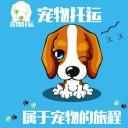 上海宠物托运